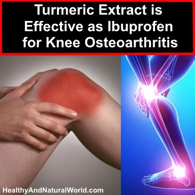 Ground-breaking new studies establish that turmeric extract is a viable alternative to ibuprofen in relieving pain associated with knee osteoarthritis.