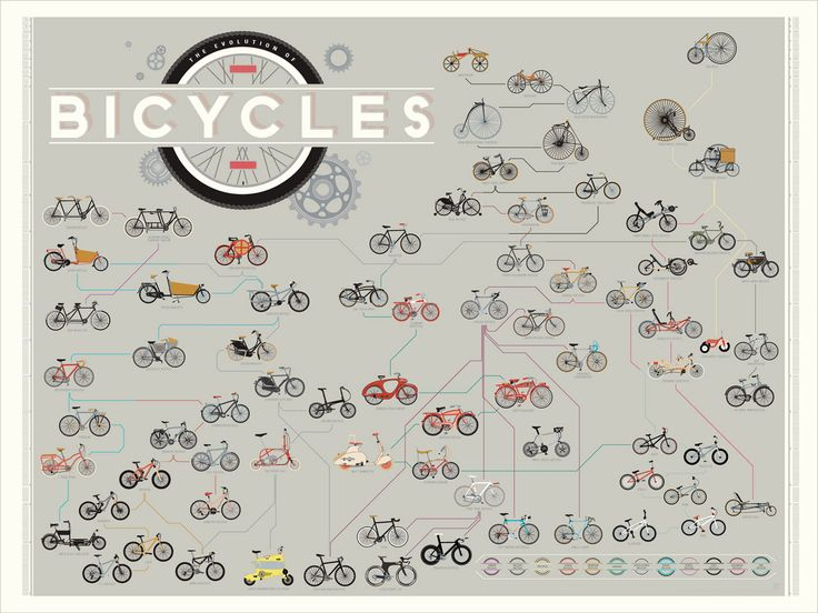 The Evolution Of Bicycles Print by Pop Chart Lab