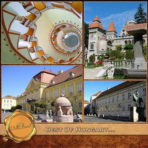 Székesfehérvár - Central-Transdanubia http://www.edelland.com/hu/?option=com_zoo&view=category&layout=category&Itemid=589 (HU) http://www.edelland.com/en/?option=com_zoo&view=category&layout=category&Itemid=589 (EN) http://www.edelland.com/de/?option=com_zoo&view=category&layout=category&Itemid=589 (DE)