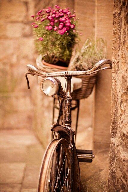 Bicicleta antiga com flores