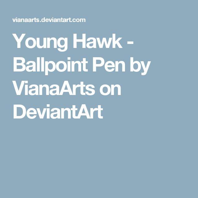 Young Hawk - Ballpoint Pen by VianaArts on DeviantArt