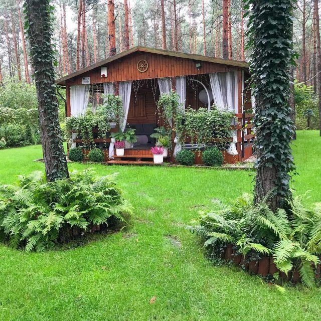 Jak Wyczyscic Buty Z Zamszu I Nubuku 9 Domowych Sposobow Twoje Diy Patio Garden House Styles