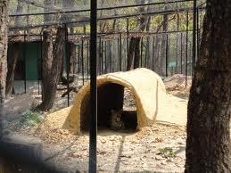 Tourist Attraction India: Malsi Deer Park Dehradun India