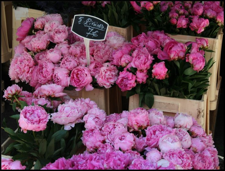 119 best peonia images on pinterest peonies pretty flowers and create a point of difference at your reception wedding with a beautiful flower stall display inspired by french flower markets mightylinksfo