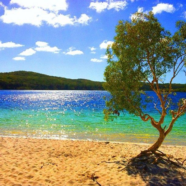 Lake McKenzie - Frazer Island, Queensland (Photo by seeaustralia / Instagram)