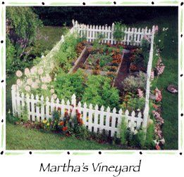 Looks kind of like my veggie garden. I have a little 2 ft picket fence around mine to keep the mutts and rabbits out.