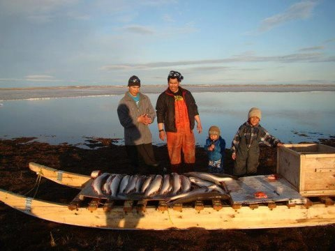 nunavut hunting outfitters