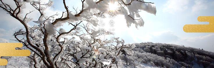 奈良県観光公式サイト「あをによし なら旅ネット」(旧大和路アーカイブ)あおによし なら旅ネット。奈良大和路への旅に役立つ観光情報満載!伝統行事をはじめ、神社仏閣の秘宝・秘仏の特別公開などのイベント、観光名所、観光モデルコース、ガイドツアー、宿泊温泉、グルメお土産などのおすすめ情報がご覧いただけます。