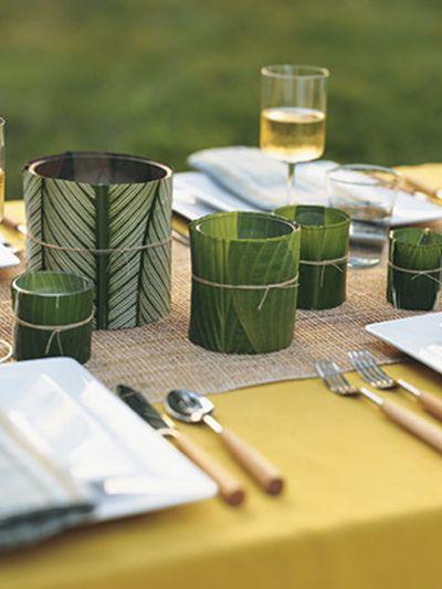 DIY Calathea, Houseplant for September 2014 thejoyofplants.co.uk