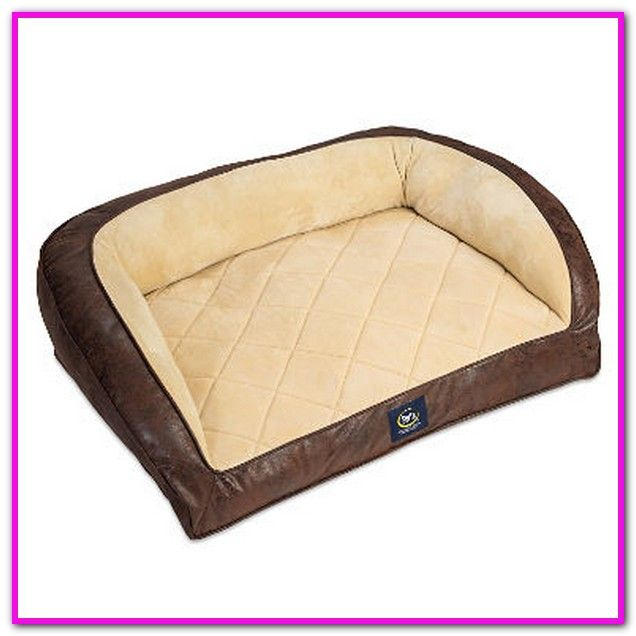 Does Sam S Club Sell Dog Beds With Images Serta Perfect