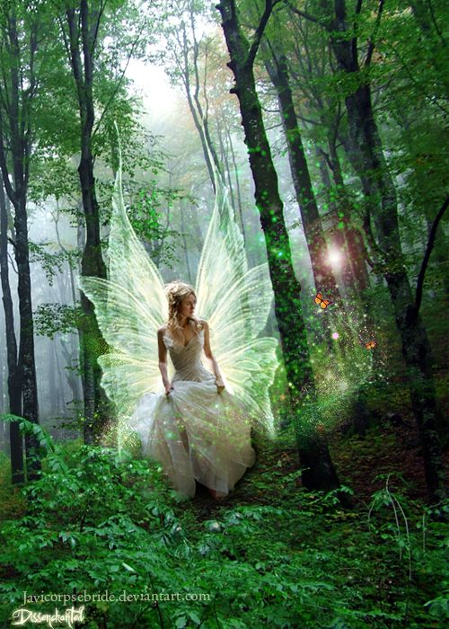 How to cause a fairy of desires