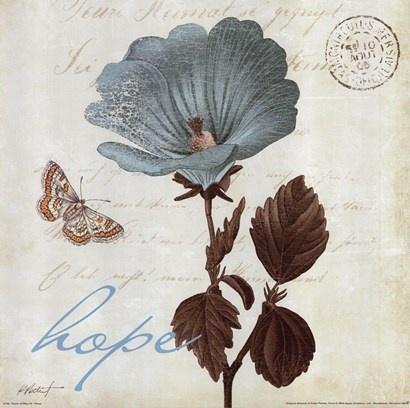 Lovely postcard of wild geranium