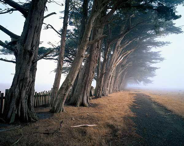 Famous Landscape Photographers - David Brookover