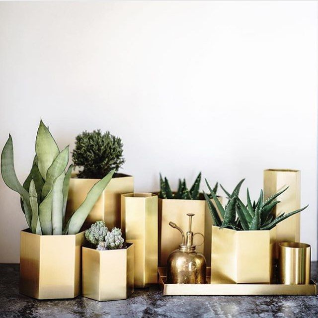 ferm LIVING Brass Hexagon pots and vases: https://www.fermliving.com/webshop/shop/brass.aspx