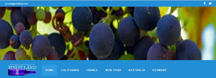 https://pinotland.tumblr.com  Travel Tips to European Countries: France  The crowd is attracted to sparkling ski slopes of the Alps, sunlit vineyards and sun-baked beaches of this beautiful country. pinotland.com  #pinotland #wineandfood