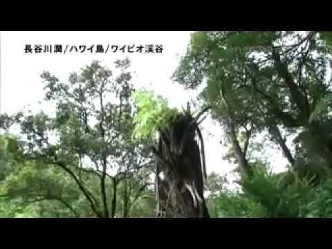 Another Sky Jun Hasegawa 1