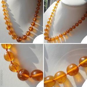Bernstein Kette Butterscotch 31 g Gramm Real Baltic Amber Necklace Oliven