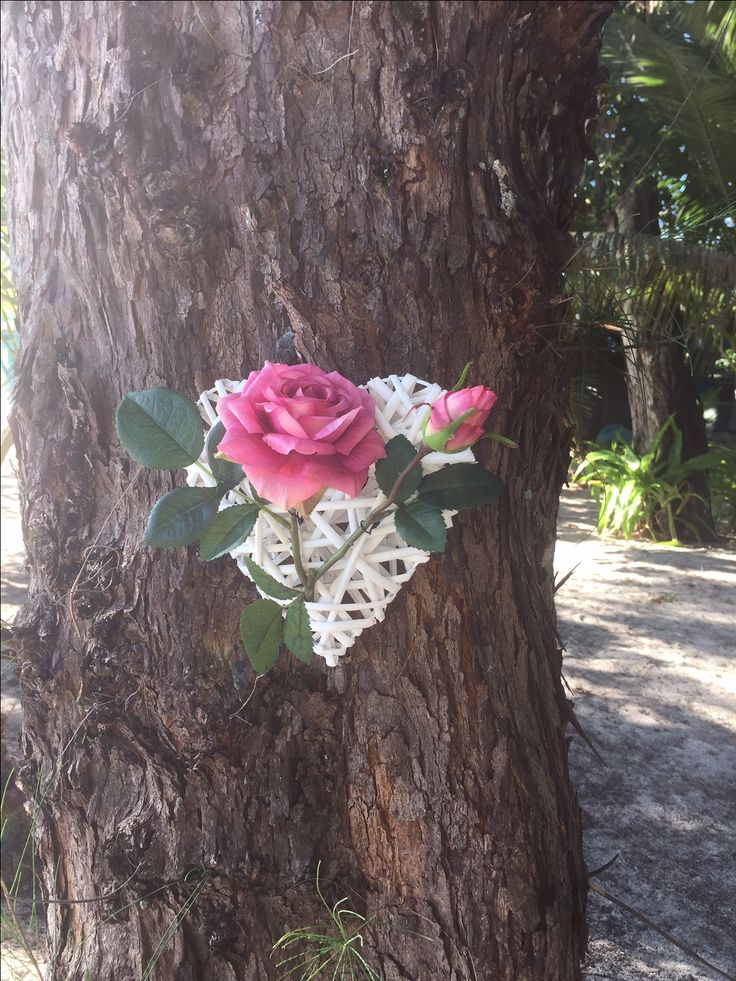 Wicker hearts decorated with a rose and pinned to the trees along the beach aisle