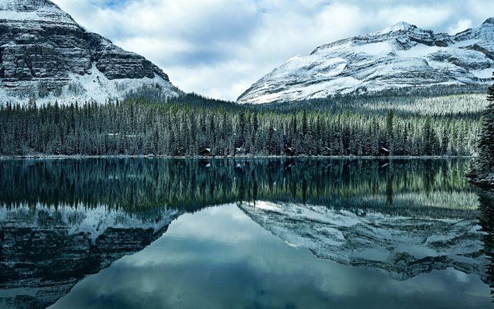 Hämta bilder Sjön O Hara, Mountain lake, skogen, kväll, berg, I De Kanadensiska Klippiga Bergen, Hector, Kanada, British Columbia