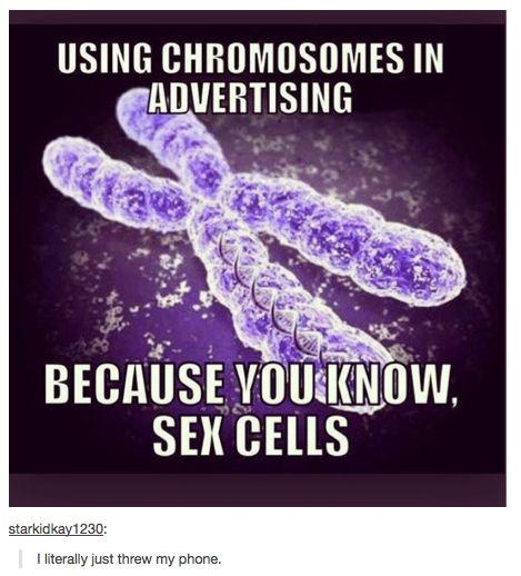 Using Chromosomes in Advertising...Because you Know Sex Cells.