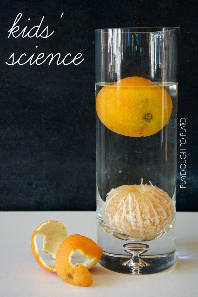 Een snel en makkelijk zink of drijfexperiment met een sinaasappel voor kinderen. Blijft hij drijven met schil? Of juist zonder?