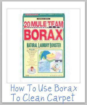 Carpet Stain Remover:  1/2 C. Borax & 2 C. Warm Water