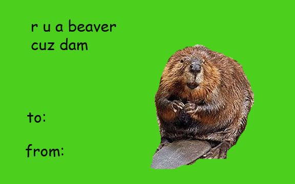 35 Rude and Funny Valentines Day Cards - Page 4 of 35 - BuzzLamp