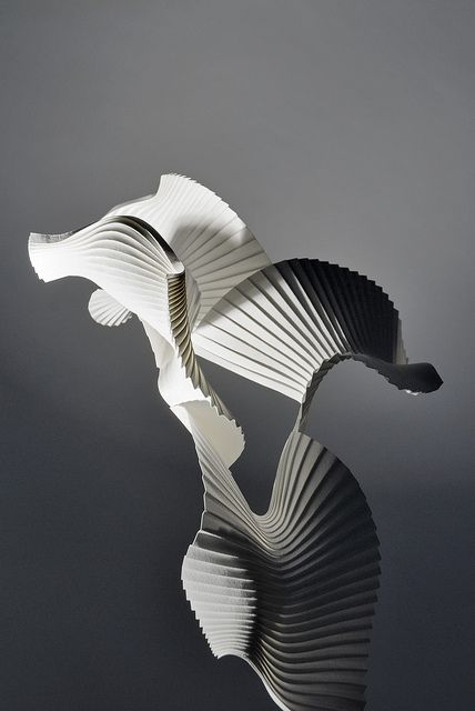 Experimental pleat (Bird in Flight) Created using hand-pleated, wet folded paper - Richard Sweeney