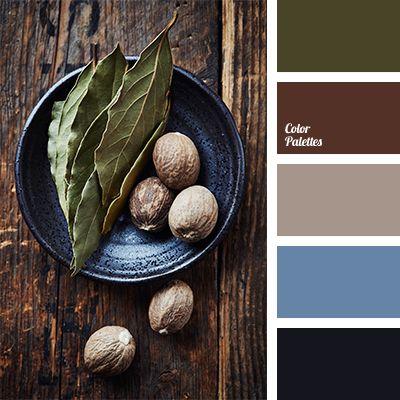 Color Palette #1187