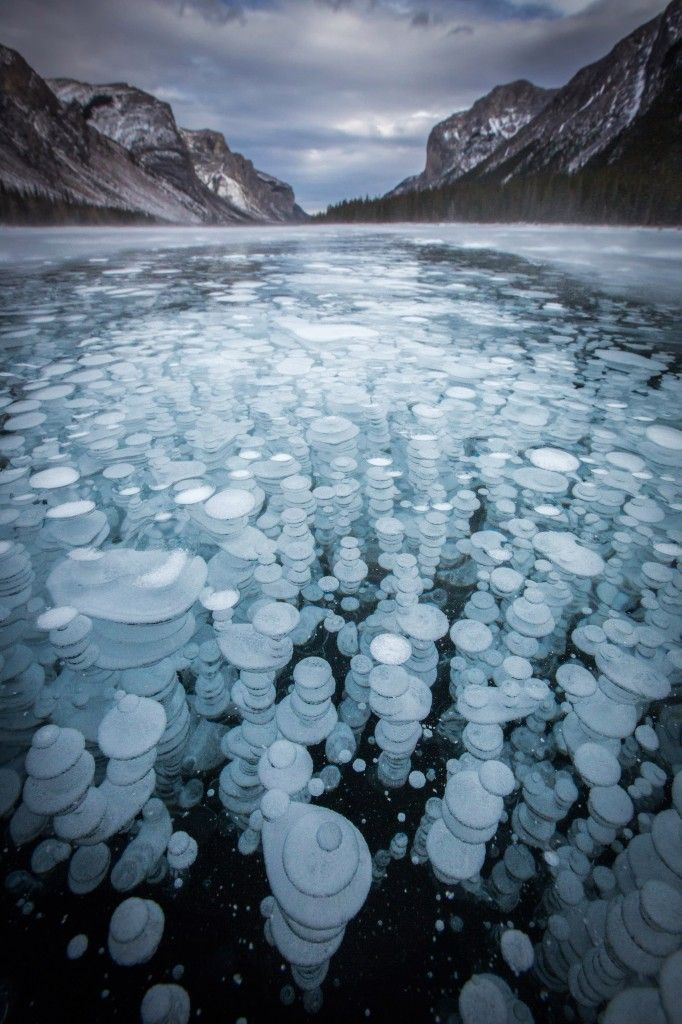 Photographer captures phenomenon in lakes of Banff National Park in Canada - Frozen Methane bubbles