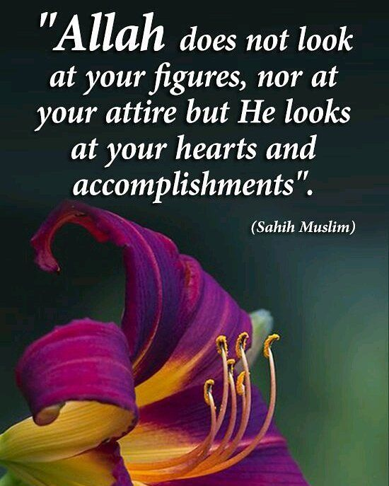 True #islam #muslim #Allah #Quran #ProphetMuhammadpbuh #instagram #photo #photooftheday #beautiful #photography #advicequotes #lord #god #love #man #men #woman #women #india #girl #girls #boys #pictures #Facebook #twitter #guidance #truth #heart #heaven #photogrid