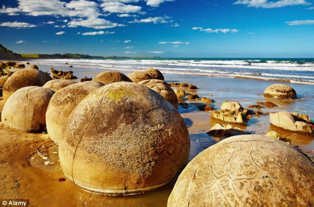 The mysterious Moeraki Boulders of Maori legend that are made from natural concrete and date back 60 MILLION years.   Māoris explained giant boulders on New Zealand's Koekohe Beach as eel baskets scattered after the sinking of a legendary canoe. But in fact the Moeraki Boulders are concretions - formations created by hardening sea sediment -  that have been exposed through sea erosion Date from the Paleocene epoch, making them at least 56 million years old.