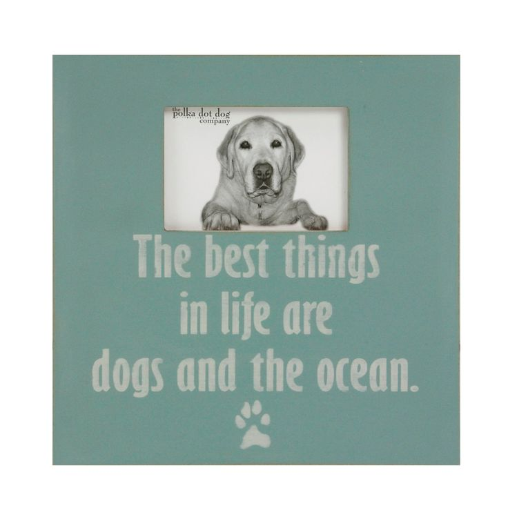 Coastal dog decor, distressed beach frame, dog lover frame, dog frame, beach decor