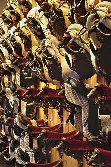 FileItem-86088-bridle62.jpg 382×576 pixels  Wishing your tack room looked like this....with a barn full of horses to match