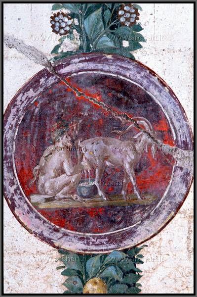 Pompei, affresco 30-40 d.c., candelabro vegetale