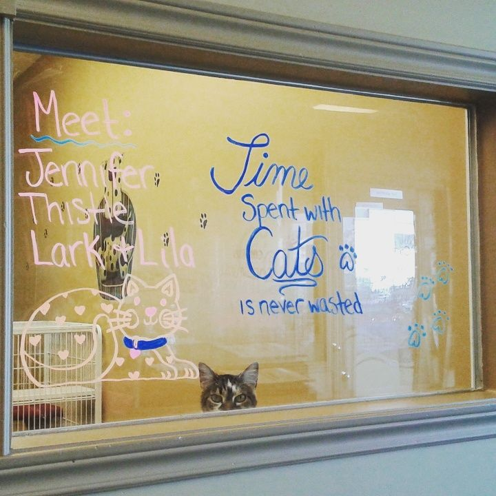 """Time spent with cats is never wasted""- Lila (adopted 2016) seemed to approve with the redone artwork!"