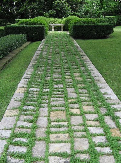 Love this all green garden with the mossy/ grassy path.Great  to do around a stable....