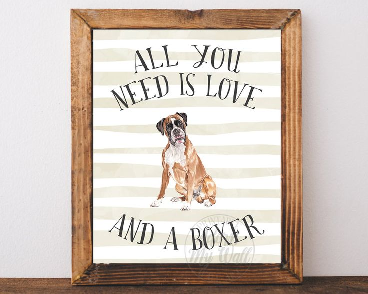 Boxer Dog Print, Dog Print, Boxer Dog Poster, All you need is love and a boxer dog, Boxer Wall Art, Boxer Dog Quote, Gifts for Dog Lover, by AdornMyWall on Etsy