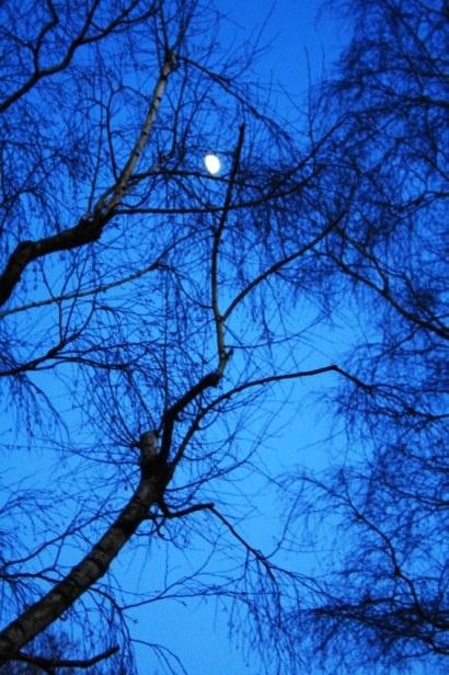 Die Farbe Blau Und Ihre Bedeutung In Der Energie Farbberatung