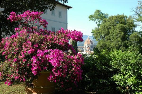 Villa Bardini, soon the Wysteria will be in flower!