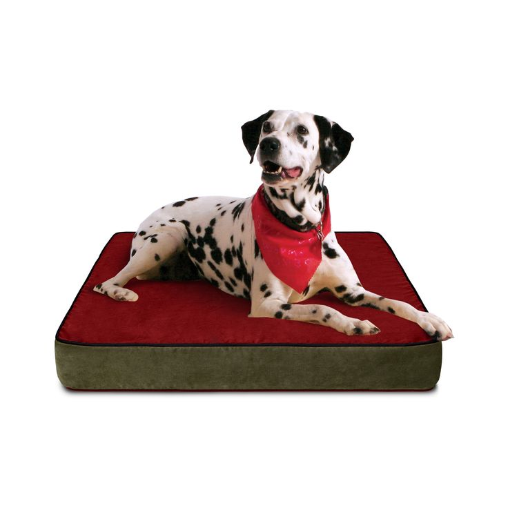 Buddy Beds Luxury Memory Foam Dog Bed with Colorado Mountain suede microfiber cover