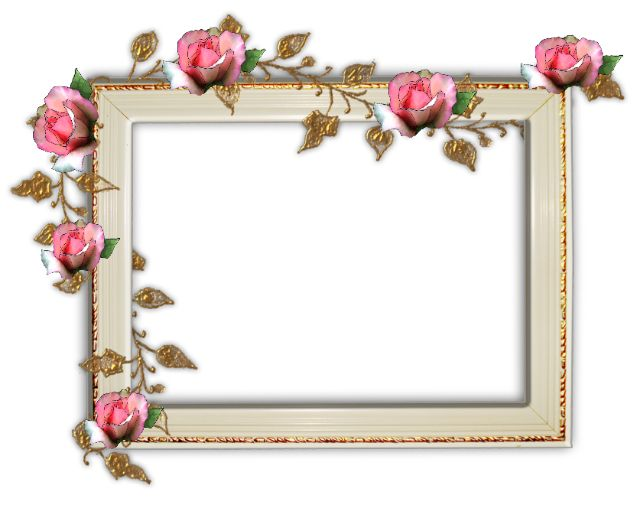 Fancy Photo Frames - Frame Design & Reviews ✓