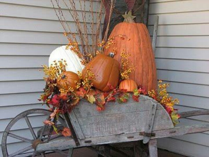 Wheel barrow of pumpkins