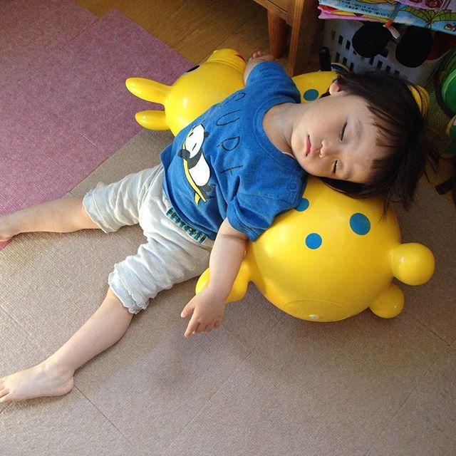 Instagram media macharob - Rody こんな使い方もあったのか そして爆睡のおとです☺️ #おと #2歳1ヶ月  #Rody #ロディ #寝る #こども
