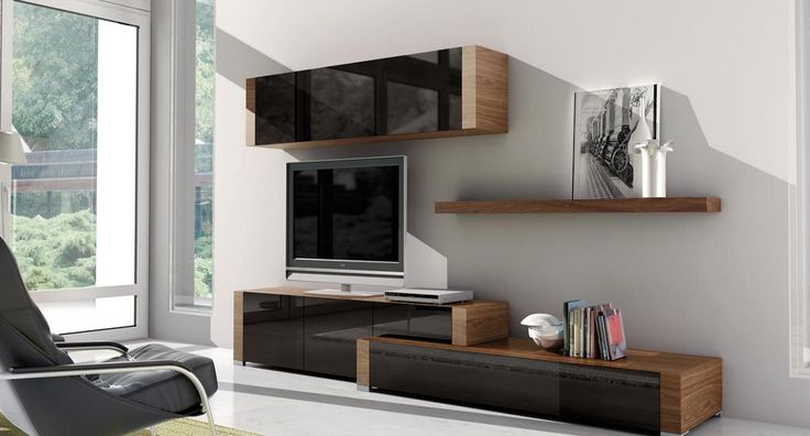 contemporary glass and wood TV wall system