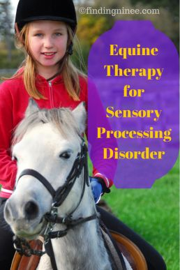 Equine Therapy for Sensory Processing. It's also great for those with Autism too. I've found that animals really help my son - they seem to understand more!!!
