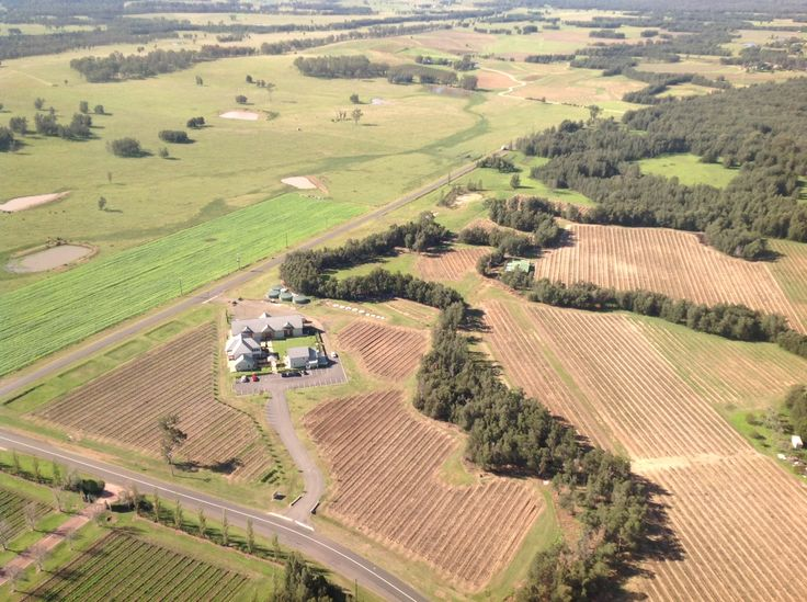 Keith Tulloch Wine and Vineyard from the sky! 40 year old vineyard with Semillon, Chardonnay and Shiraz.
