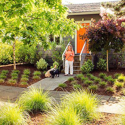 Garden Design For Dogs 62 best dog friendly garden images on pinterest | backyard ideas