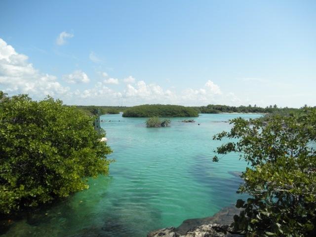 Akumal lagoon