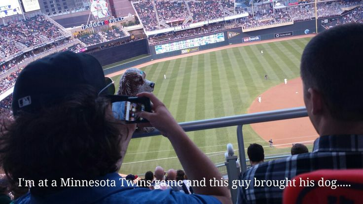 At the Twins game tonight